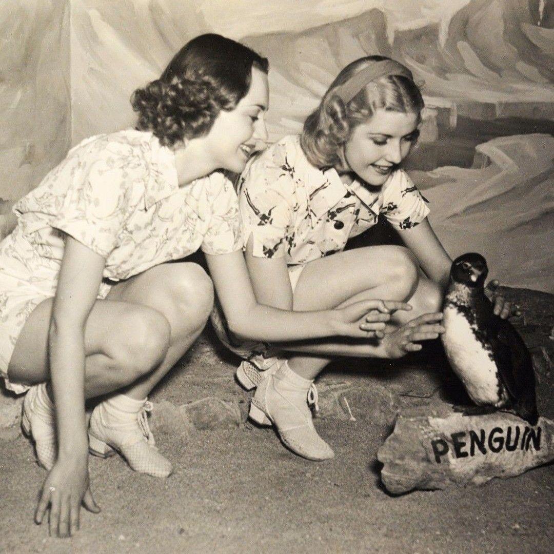 Olivia de Havilland and Anita Louise