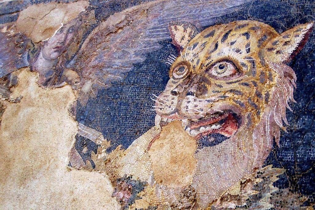 Mosaïque de Delos.