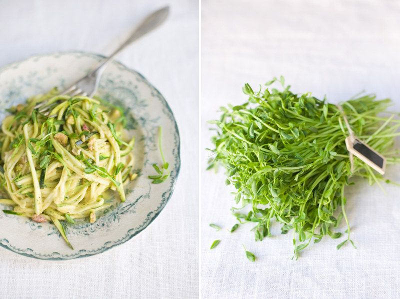 <b>Zoodles forever!</b>