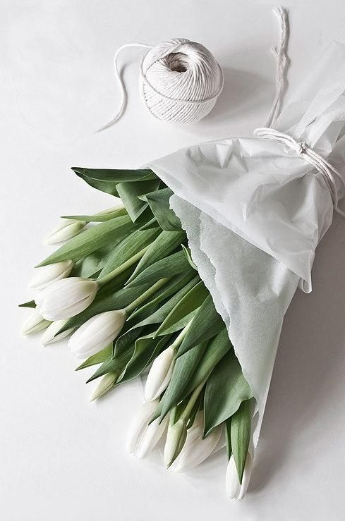White flowers tumblr white haute pinterest white flowers white flowers tumblr mightylinksfo
