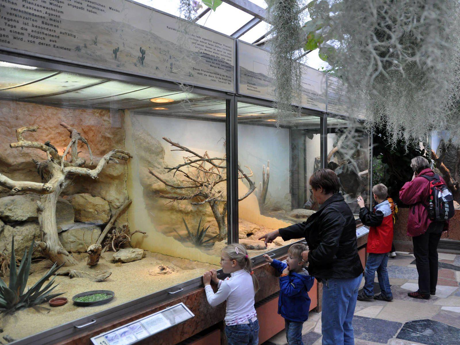 zoologischer garten berlin eintritt