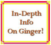 Yes, ginger is good for digestion PLUS there are other health benefits!