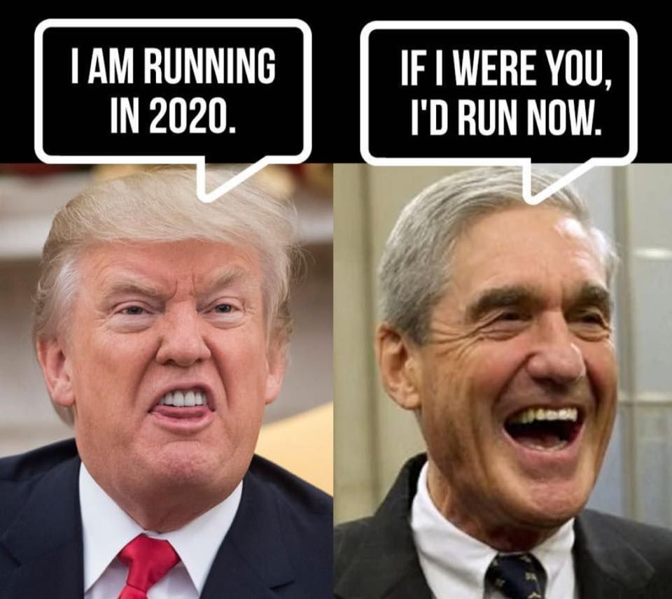 25 Brutally Hilarious Memes About The Trump Mueller Showdown The