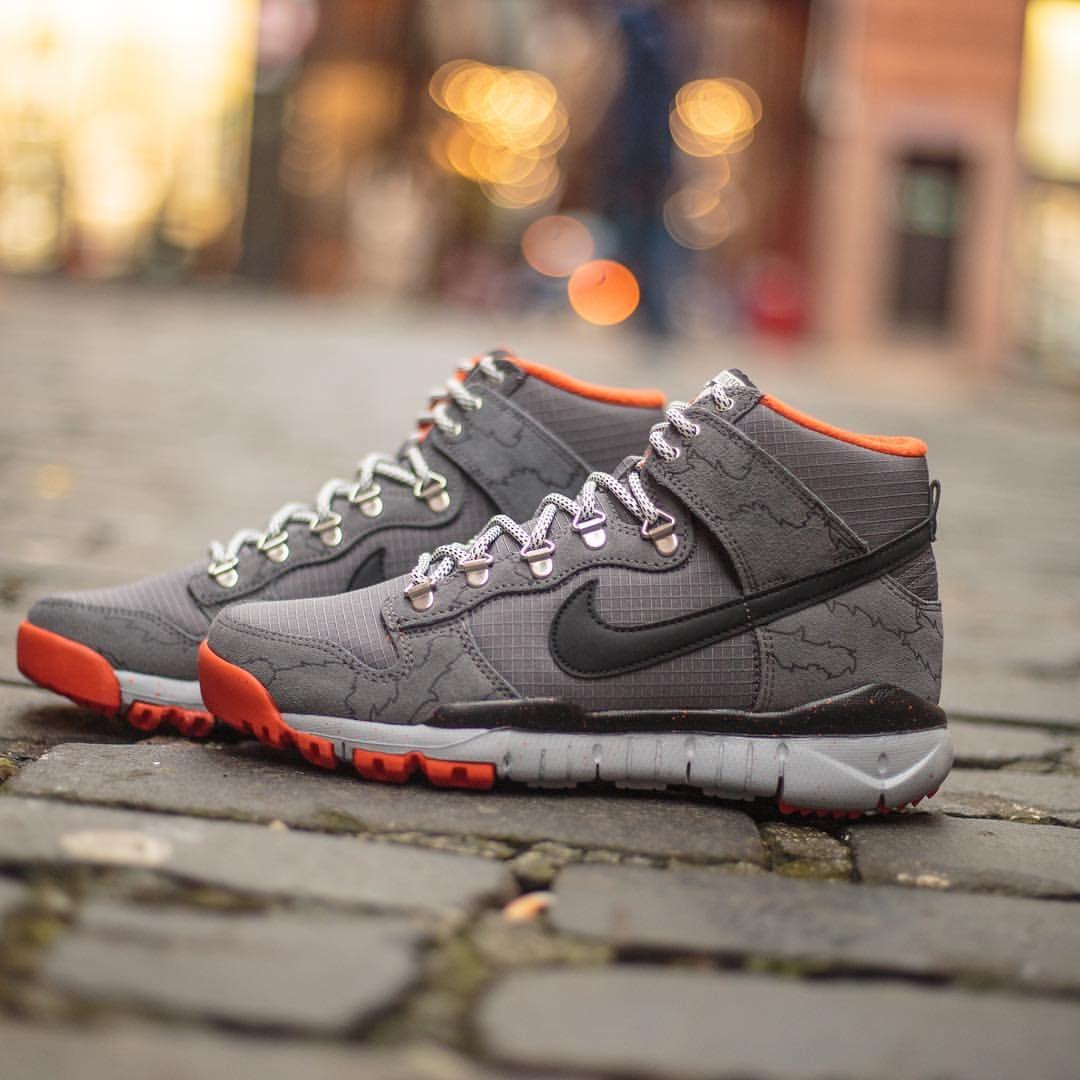 online store 92bcc 1d44d Polar x Nike SB Dunk
