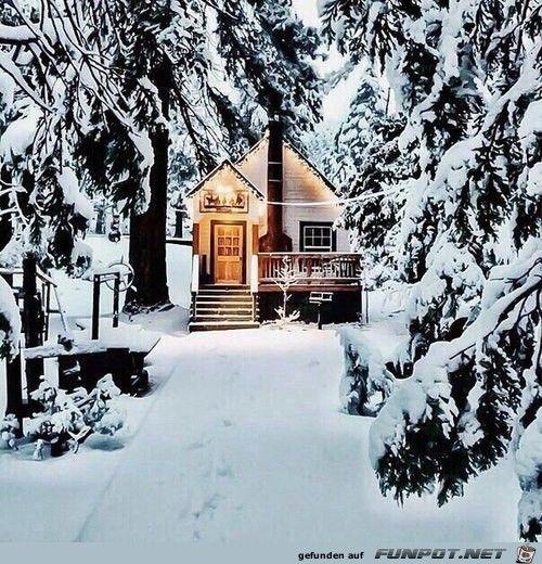 beeindruckendes Bild 'Winteridylle im tiefen Wald.jpg'