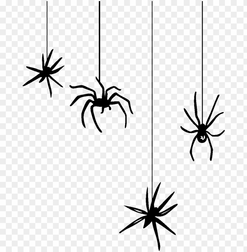 Hanging Spider Png Spiders Halloween Png Image With Transparent Background Png Free Png Images Spider Drawing Spider Web Drawing Halloween Spider Web
