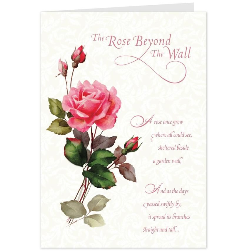 Card for sympathy rose beyond message on flowers the wall Hallmark flowers