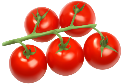 Cherry Tomatoes Clipart