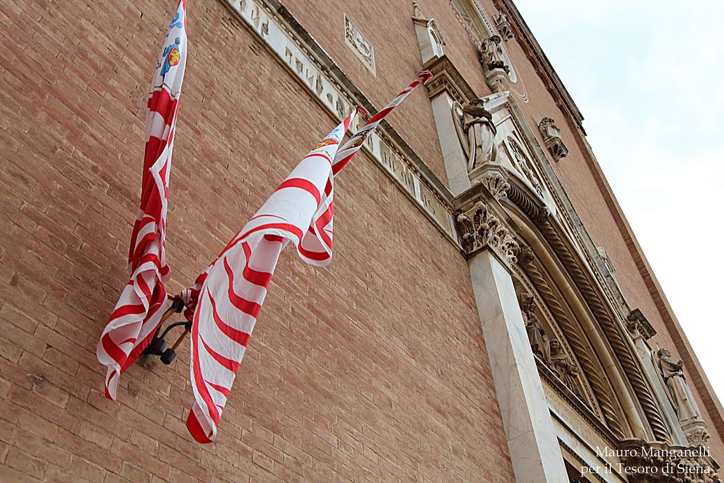 La Basilica di San Francesco - Foto de Il Tesoro di Siena su Flickr - https://www.flickr.com/photos/iltesorodisiena/14925161005/ - #Siena #PalioDiSiena #BasilicaDiSanFrancesco #ContradaDellaGiraffa