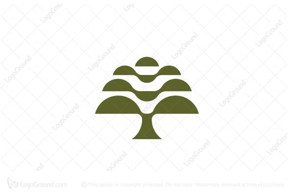 Oak Tree Logo Geometric Logo Geometric Logo Tree Logos Modern Logo