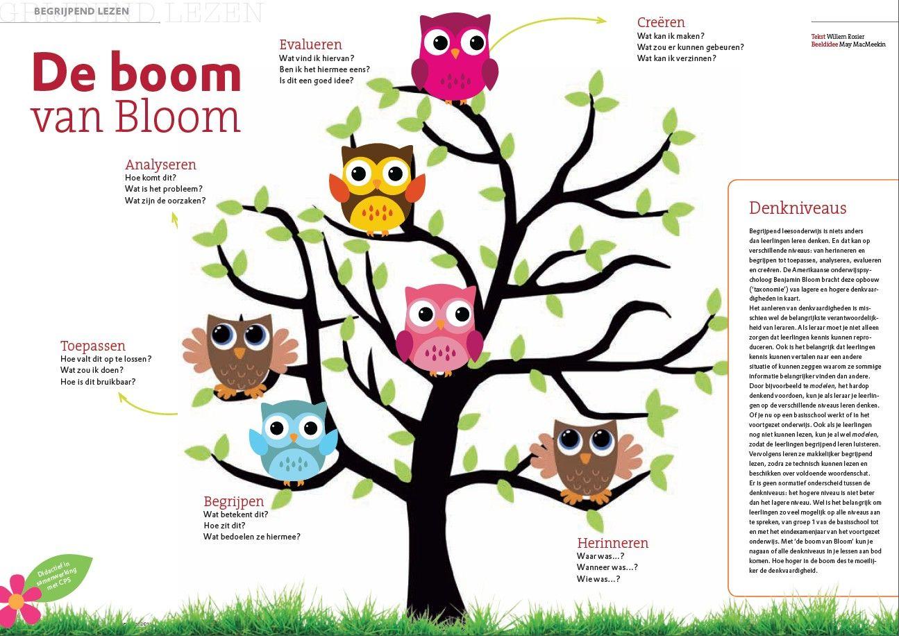 Taxonomie van Bloom toegepast op begrijpend lezen. | lezen ...