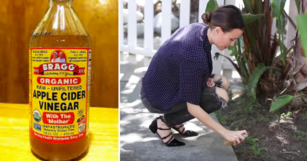 Whoa O Did You Know About This Apple Cider Vinegar Hacks Helpful Hints And Hacks Cider Vinegar Organic Apple Cider Vinegar Vinegar Uses