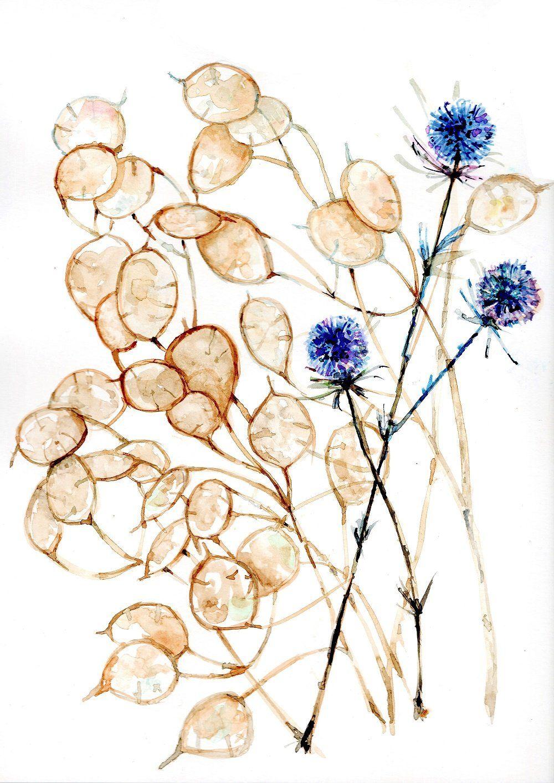 Aquarelle Peinture Tableau Fleur Chardon Bleu Et Monnaie Du