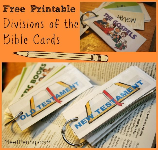 Printable Divisions of the Bible Cards | Escuela dominical ...
