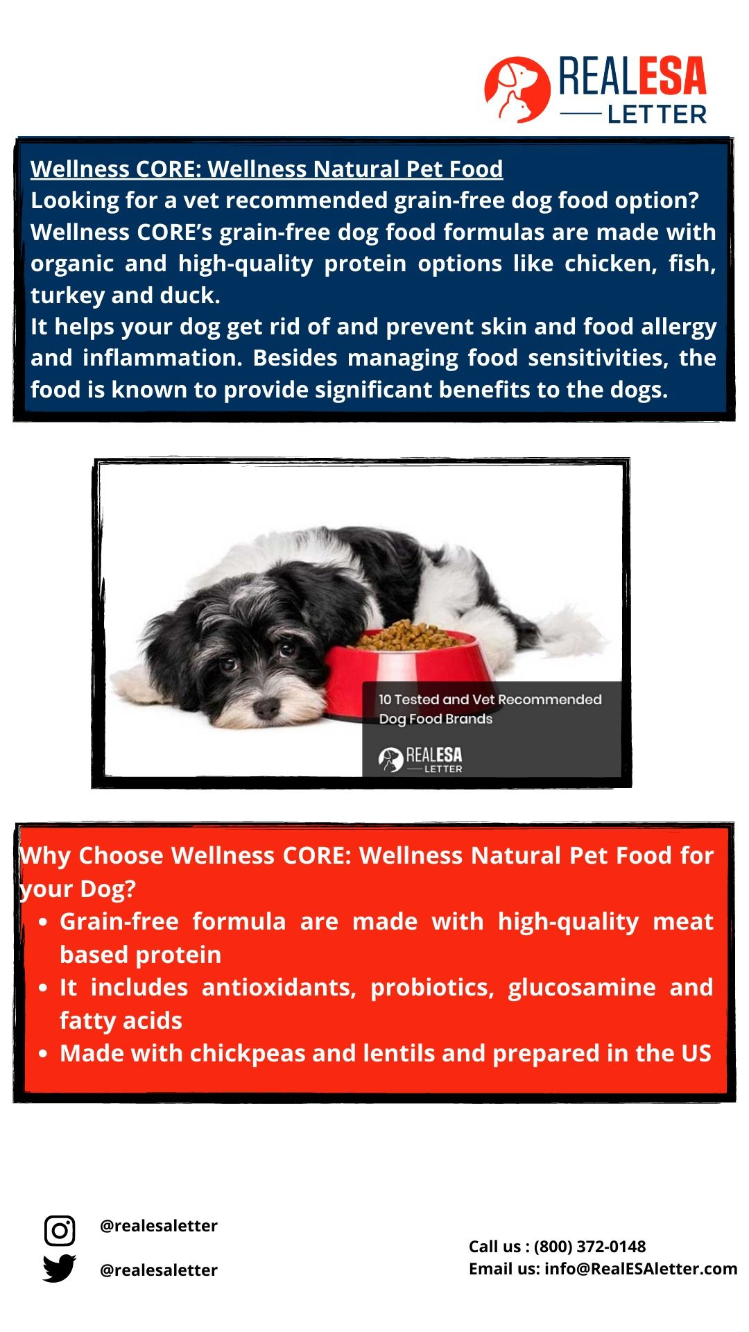 10 Tested And Vet Recommended Dog Food Brands 2 3 Dog Food Recipes Dog Food Brands Grain Free Dog Food