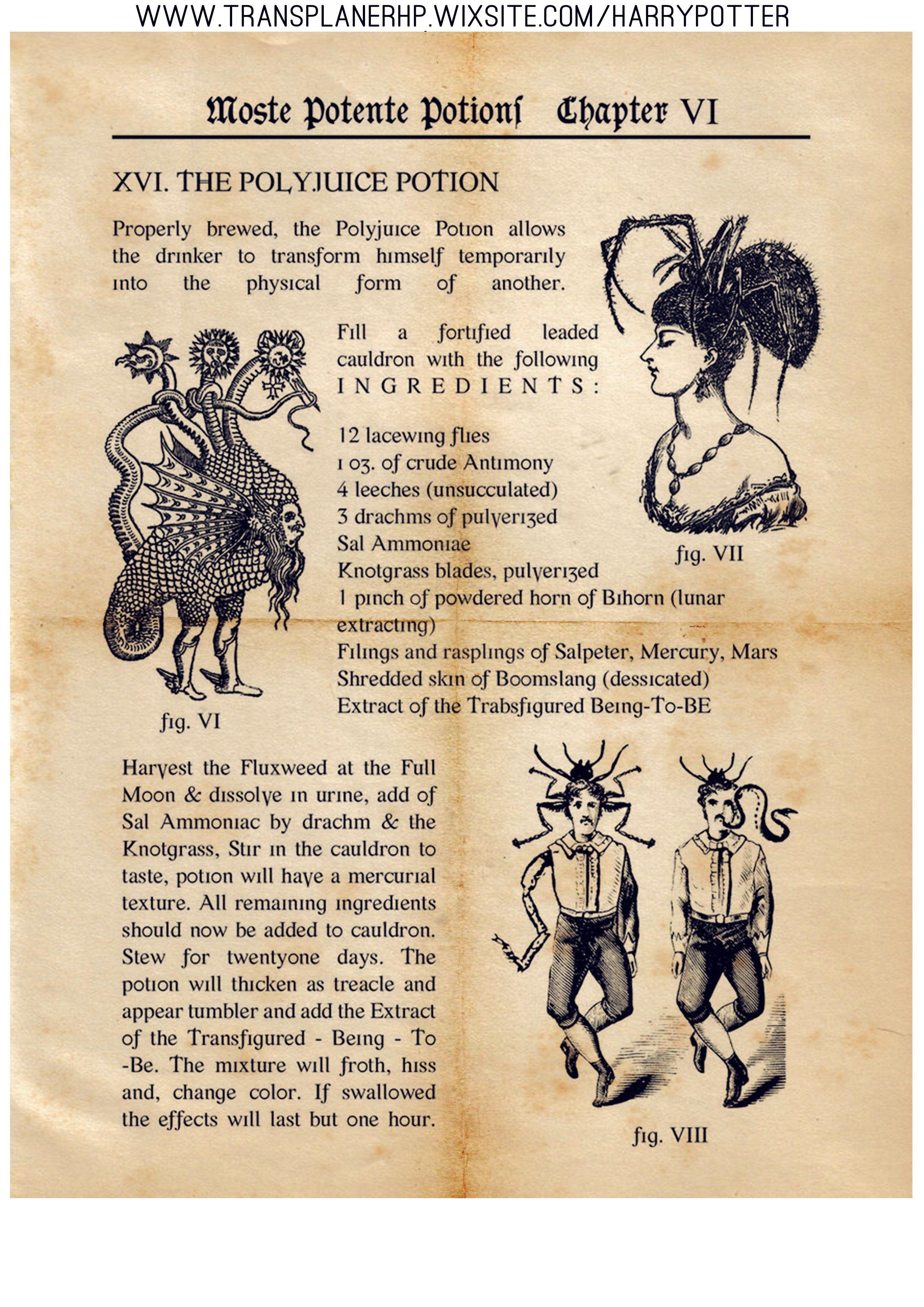 Livre De Potion Harry Potter : livre, potion, harry, potter, LIVRE, POTIONS, Illustrations, Harry, Potter,, Potions, Artisanat, Potter