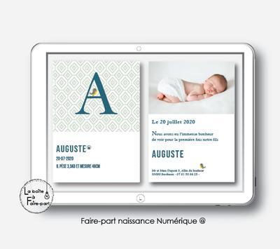 Faire-part naissance garçon Numérique (PDF) – MONOGRAMME PETIT OISEAU