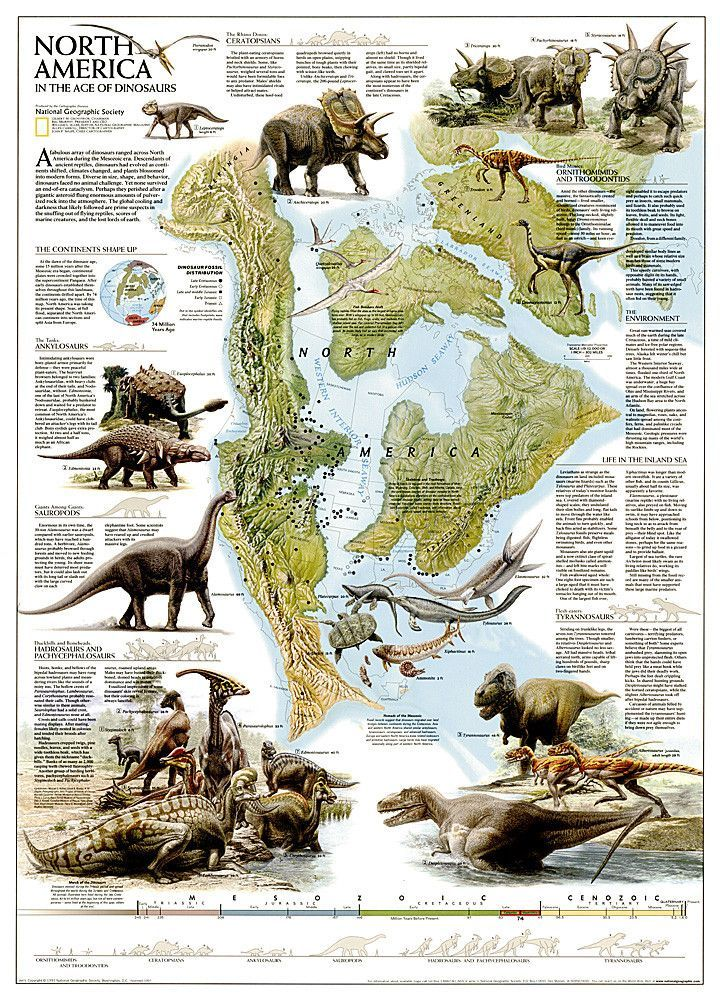 Dinosaurs of North America, Tubed by National Geographic
