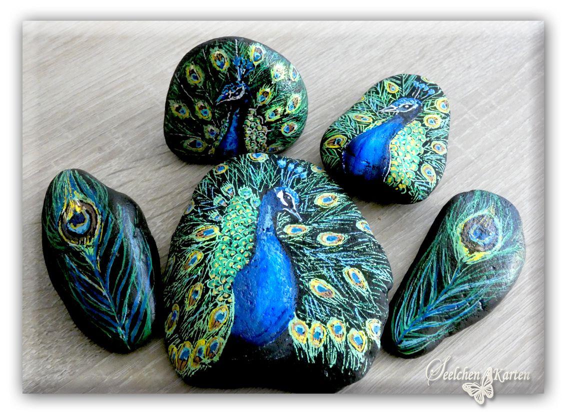 Pfauen, Pfauenfedern auf Stein