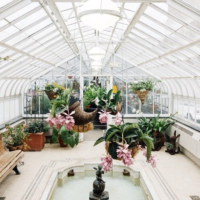 Westmount Greenhouse in Montreal // Photo by Inayali