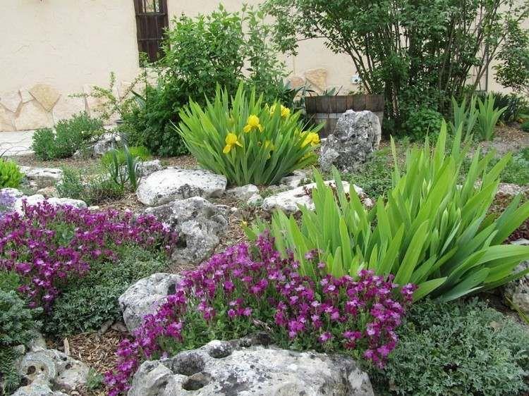 gelbe irissen und lila bl hende stauden garten. Black Bedroom Furniture Sets. Home Design Ideas