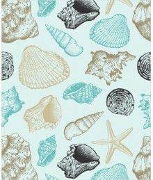 bade01322 Conchas do Mar Mais