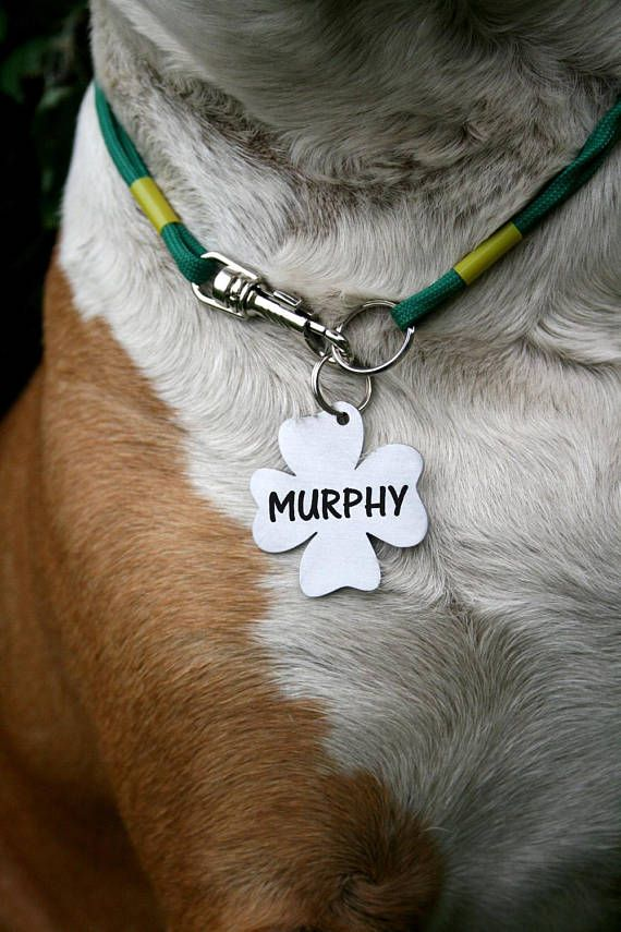 Clover Dog Tag Customized Pet Id Tag Name Tags Custom Two Sides