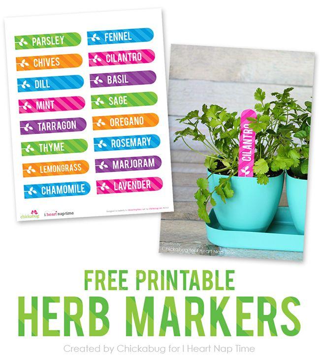 photograph about Printable Plant Labels known as Cost-free printable herb yard labels Printables CLM Community