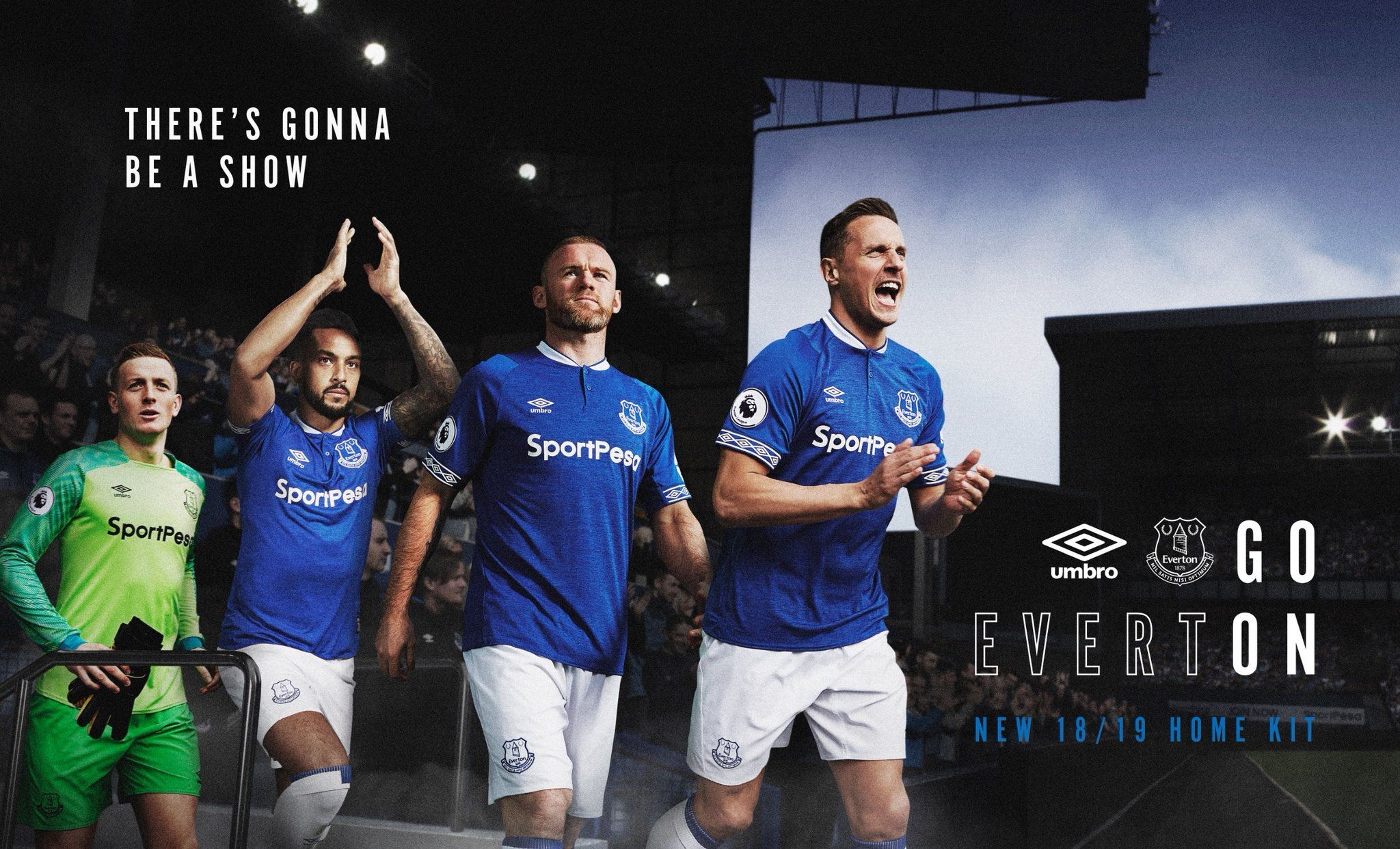 120591974 Everton 2018 2019 Home (Blue) and Goalkeeper (Green) Kits.
