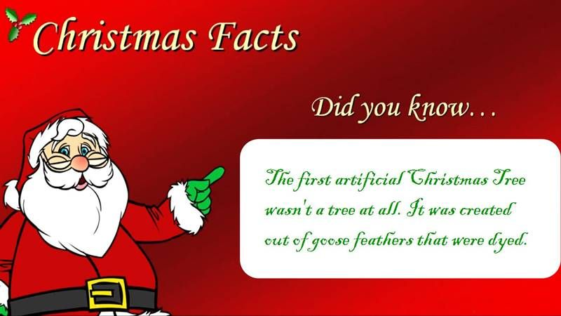 interesting christmas facts from around the world christmas fun facts for kids funny facts