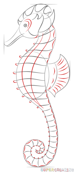 Photo of How to draw a realistic seahorse | Step by step Drawing tutorials