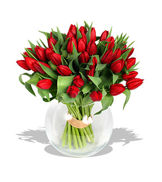 Send These Two Dozens Red Tulips Bouquet For Your Girlfriend On Your Anniversary To Show How Much You Love And With Images Tulips Flowers Red Tulips Bouquet Tulip Bouquet