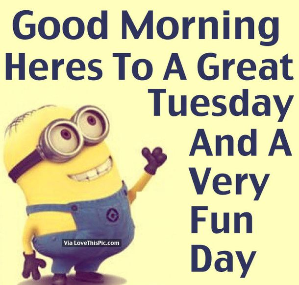 50 Cute Happy Tuesday Cartoon Quotes Quotes Good Morning Tuesday Tuesday  Quotesu2026