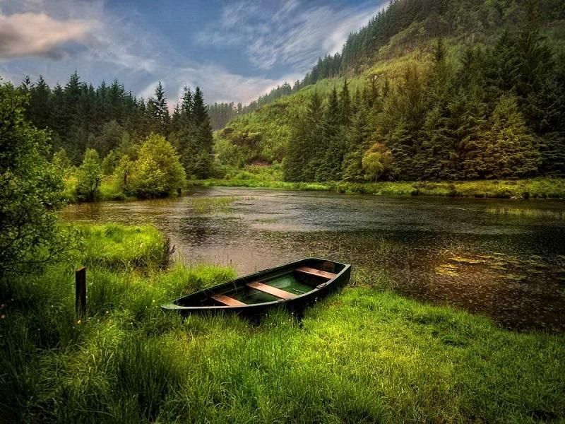Serenity Rowboat On A River Bank River Bank Boat Spring Scenery