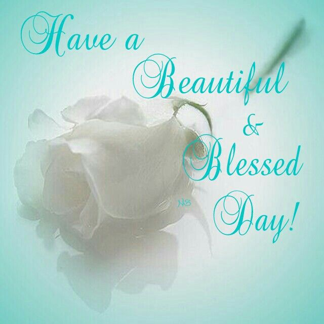 Have A Beautiful And Blessed Day Daily Blessings Pinterest