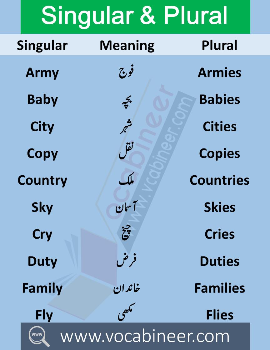 100 Singular Plural Nouns List Examples In Urdu Or Hindi With Pdf In 2020 Singular And Plural Nouns Singular And Plural Plurals