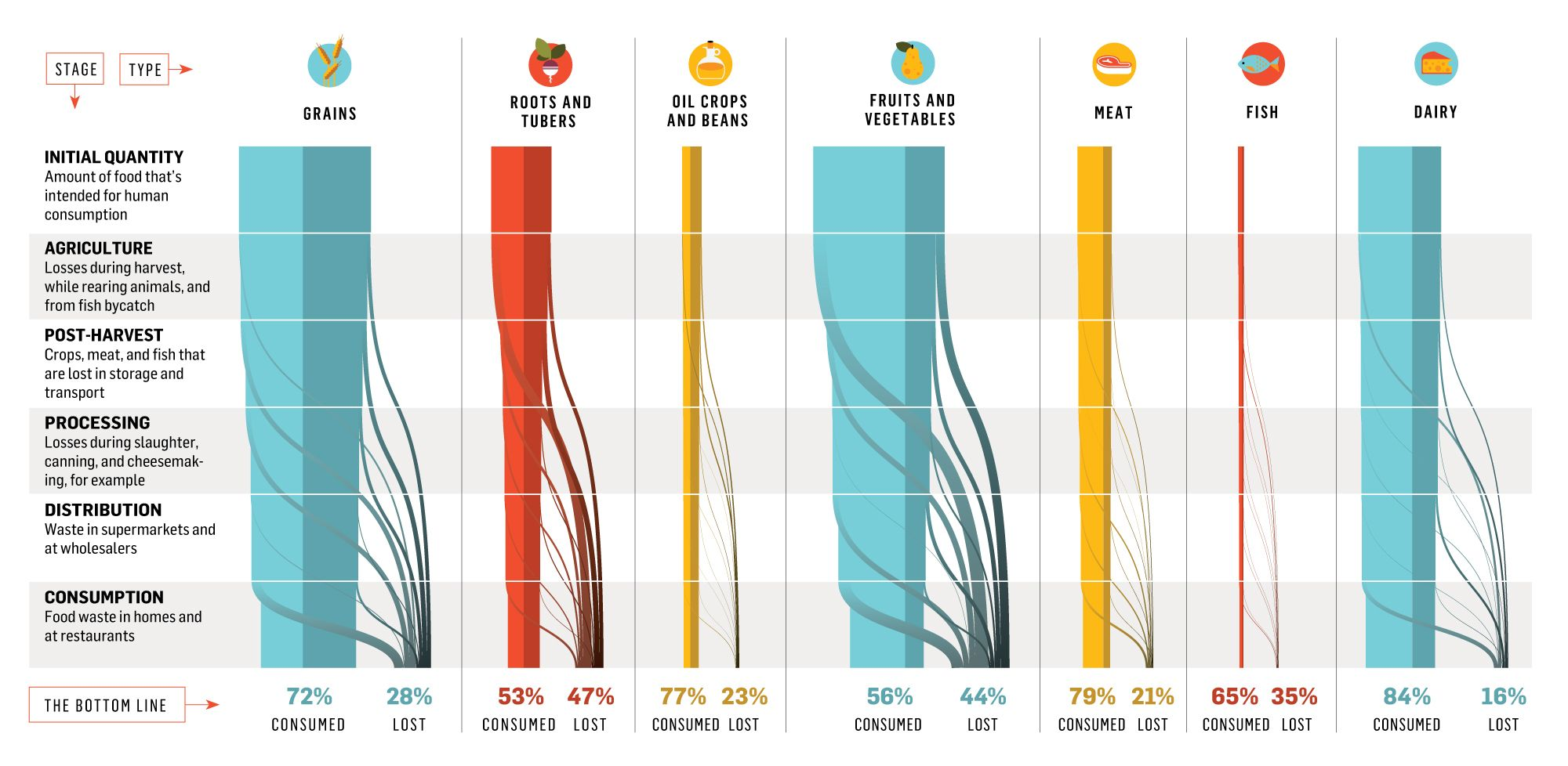 This Incredible Graphic Shows How Much Of Our Food Supply Goes ...