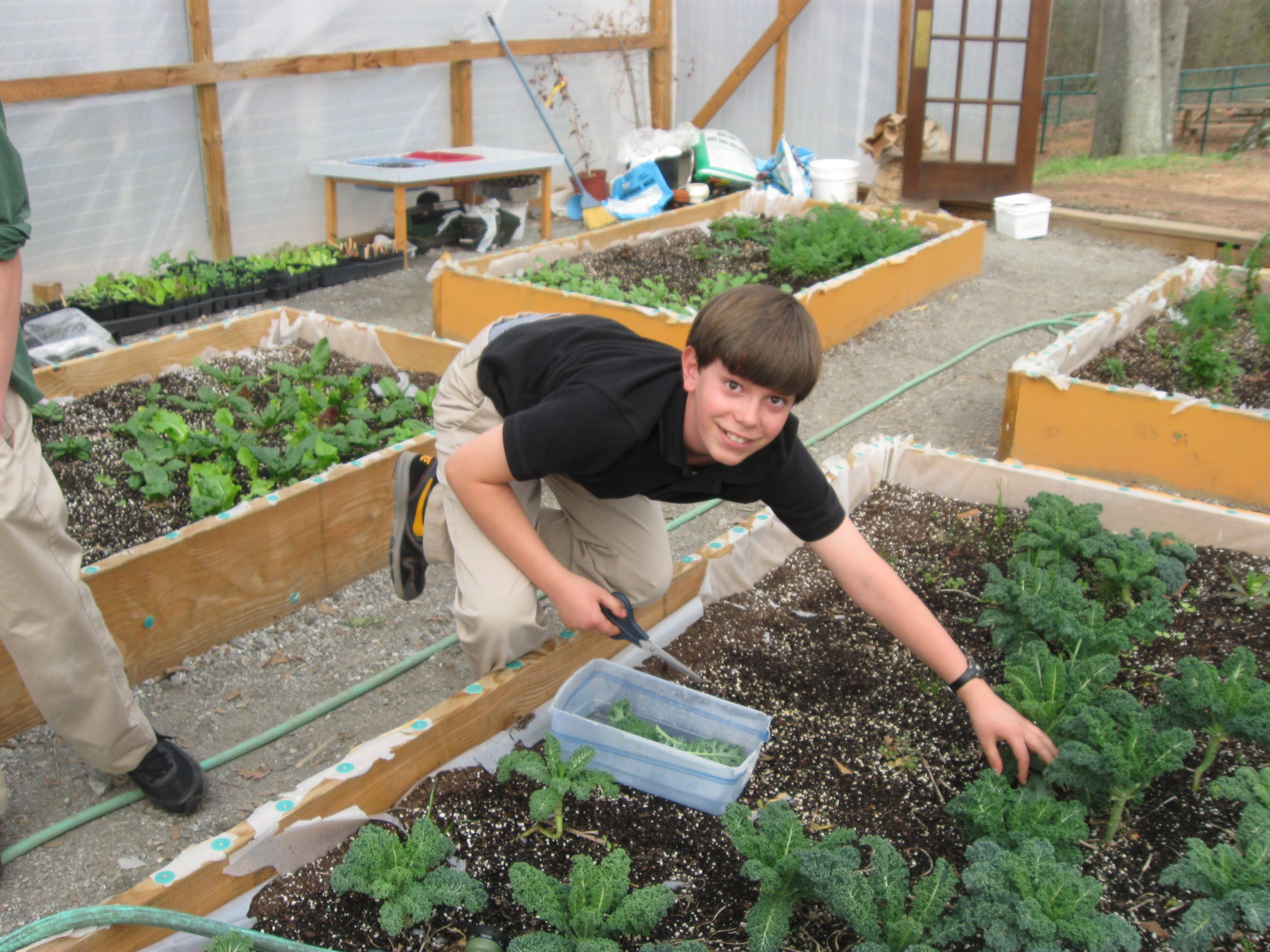 3a8ecc4df811b241b53f92e6726a6b92 - Why Gardening Should Be Taught In Schools