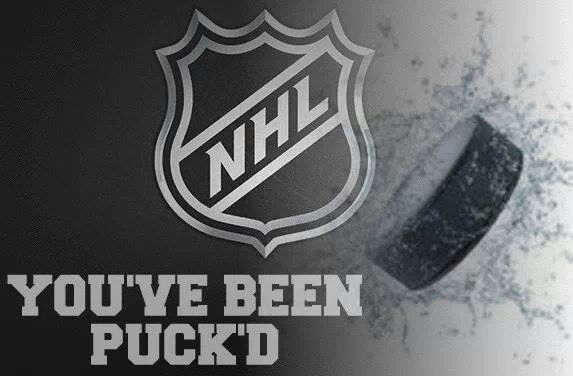 You've Been Puck'd