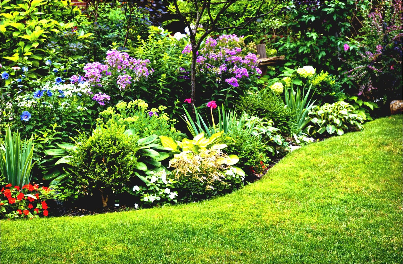 Simple Flower Garden Ideas Full Sun for Your Back Yard ...