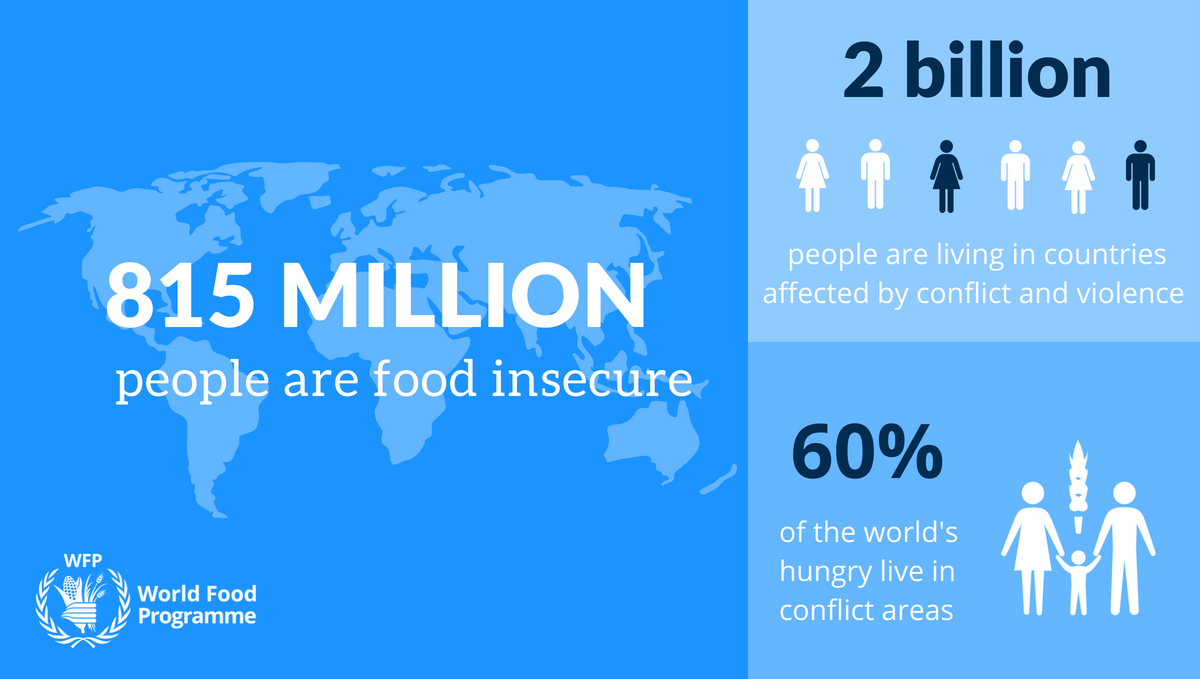 Food Insecurity Infographic From The World Food Programme World Food Programme Agriculture Facts Food Insecurity