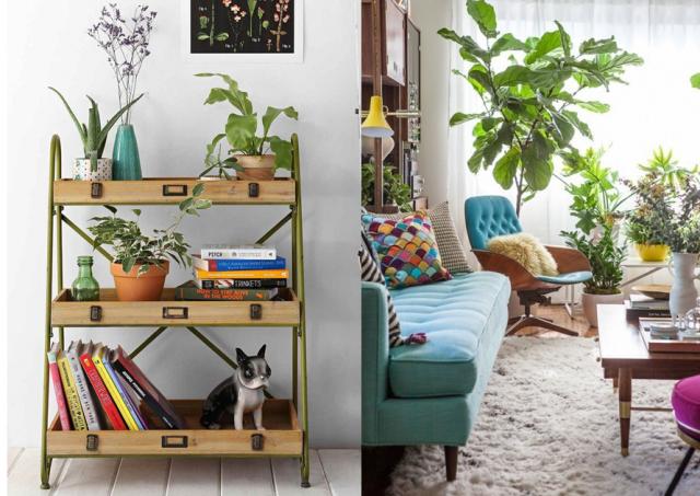 La d co boho une tendance deux styles tropical blog - Plantes et jardin interieur dans un appartement design kiev ...