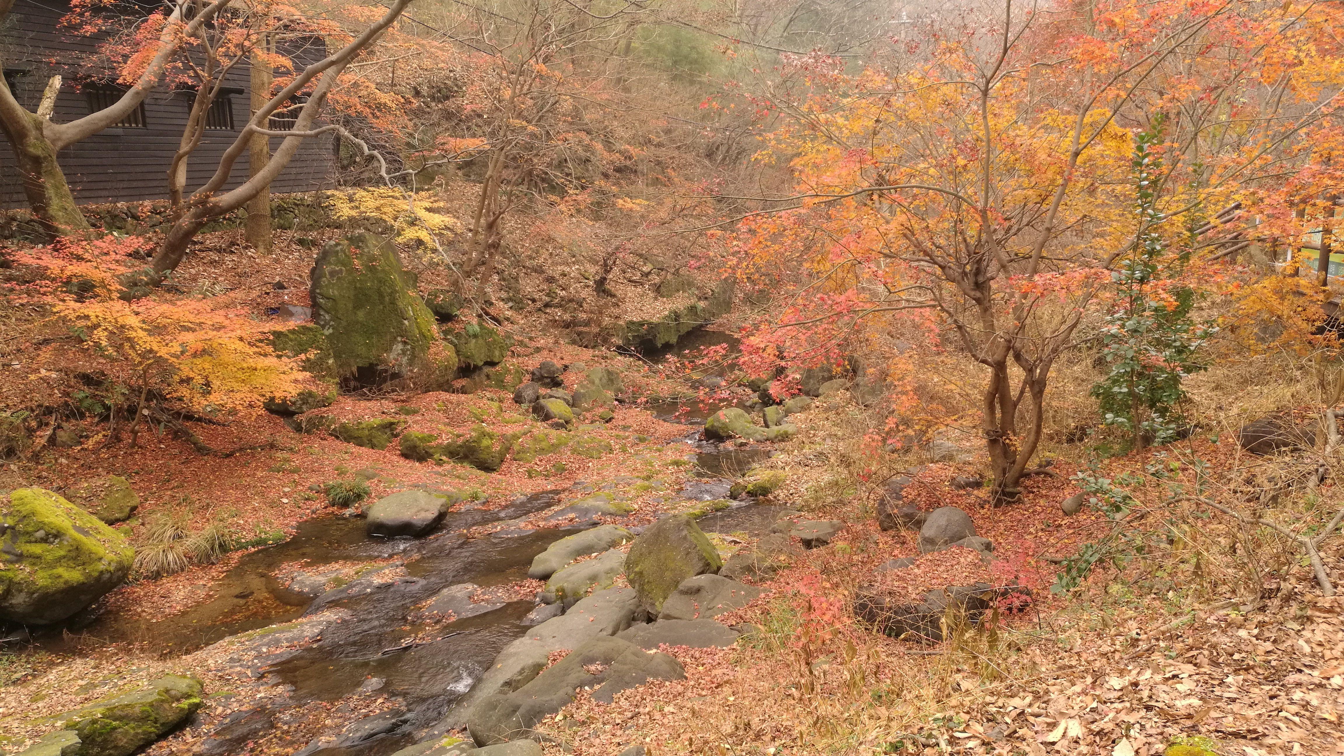 Entrada al Parque Nacional de Medeunsang