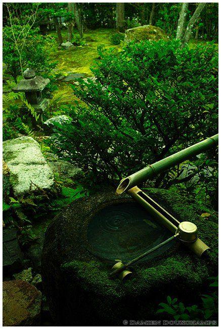 Water basin, Daiho-in (大法院), Kyoto   von Damien Douxchamps