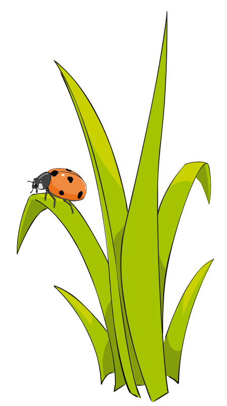 grass and flowers clip art grass2 ladybugs galore in 2018 rh pinterest com clip art grass images clip art grasshopper