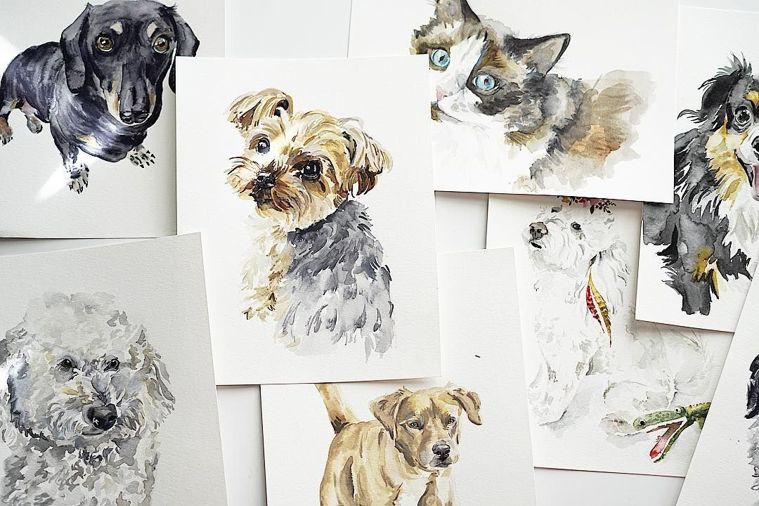 """S A R A H C R A Y on Instagram: """"So. Many. Pet. Portraits. 😍 Last day to order to get one by Christmas 🎄 #watercolor #petportrait #petstagram #dreamjob"""""""