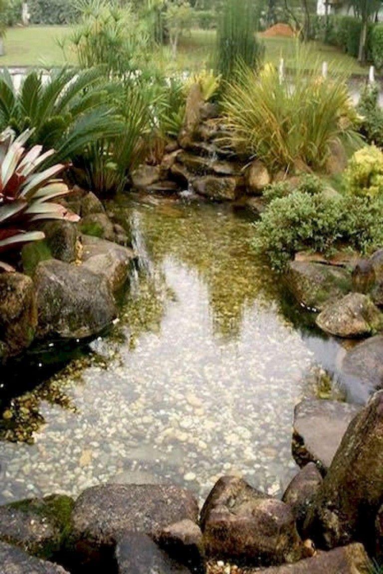 Bassin D Eau Exterieur 68+ lovely backyard ponds and water garden landscaping ideas