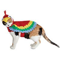 1772ae305 Halloween Bootique Polly Parrot Cat Costume | Crazy Cat Lady | Cat ...