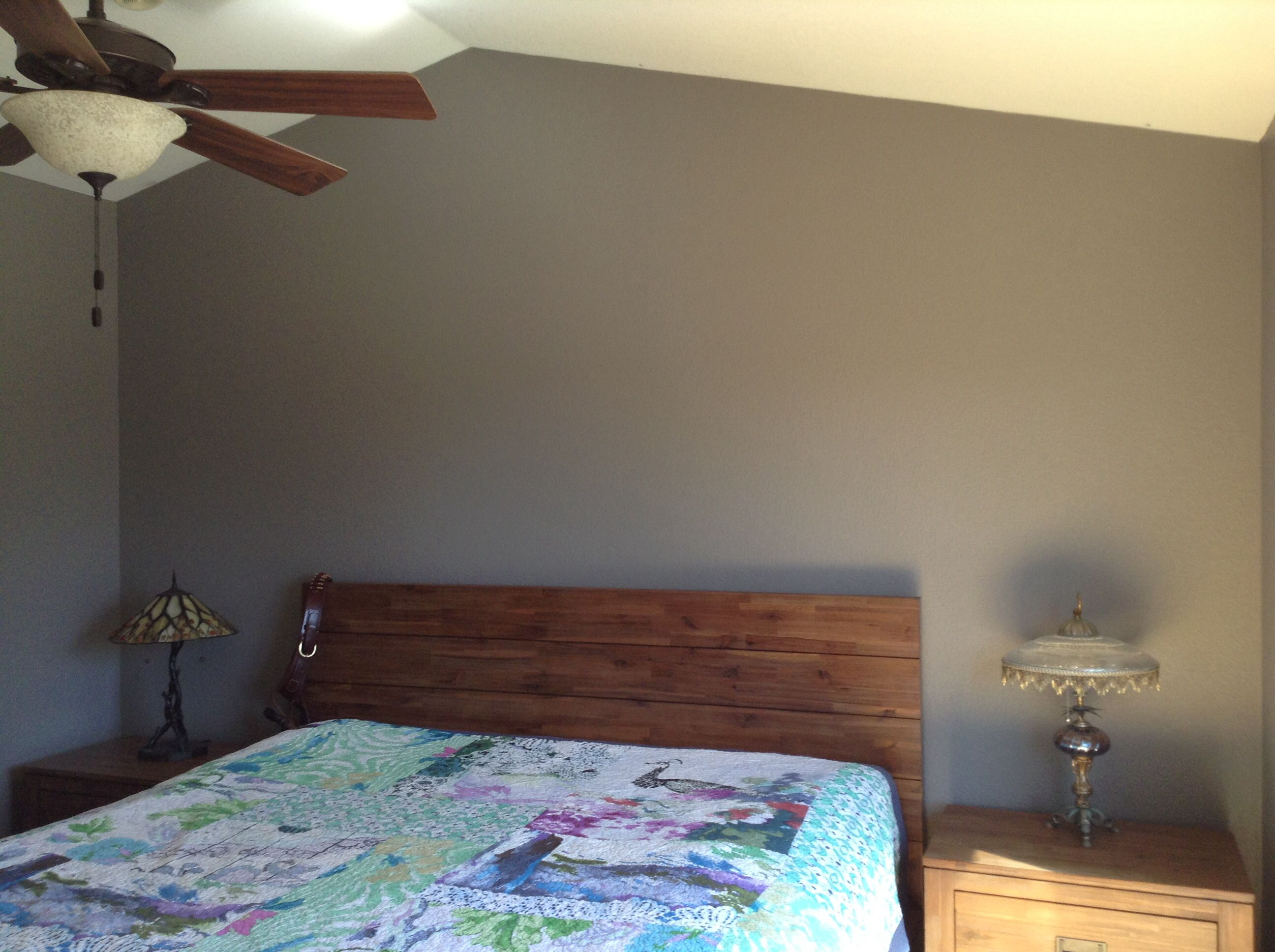 Master Bedroom Paint Colors Sherwin Williams master bedroom: sherwin williams dovetail gray; sw 7018 cool