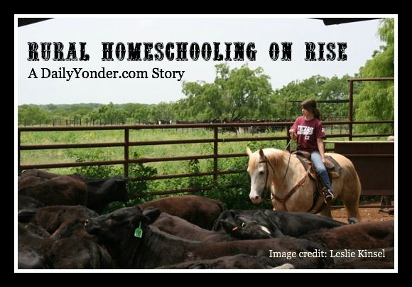 A discussion of rural homeschooling trends by Pamela of RedWhiteandGrew.com for DailyYonder.com